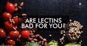 Lectins...are they affecting your gut