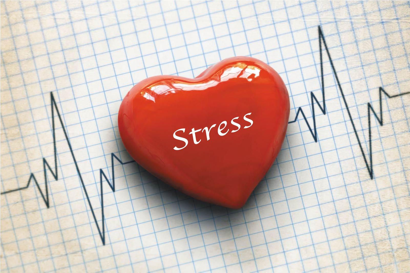 Stress & Heart
